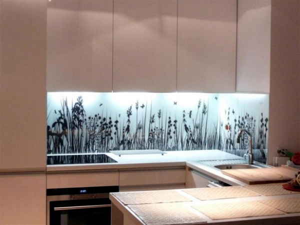 20 design ideas for kitchen glass back